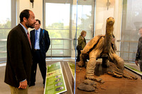 Galapagos_Conservatory_Lonesome_George_Preview-010